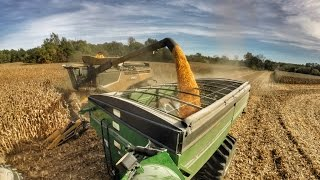 Harvest 2016 | Poynter Family Farms