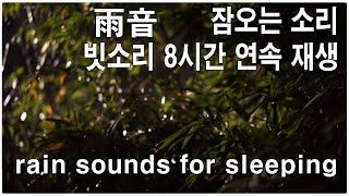 잠오는 소리 ~ 빗소리 8시간 연속 재생  雨音  rain sounds for sleeping