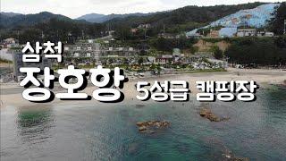 오션뷰 5성급 차박 캠핑장 삼척 장호비치 캠핑장
