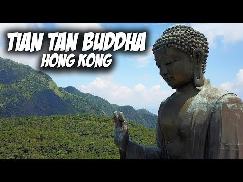 Tian Tan Buddha from the sky! Lantau Island - Hong Kong | Travel Vlog #52