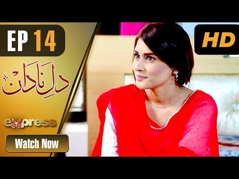 Dil E Nadaan - Episode 14 - Express Entertainment Drama