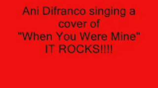 Watch Ani Difranco When You Were Mine video