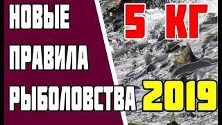 Новые правила рыболовства 2019. Штрафы за рыбалку. Новые нормы вылова рыбы. Закон о рыбалке.