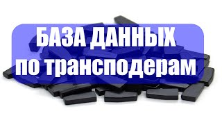 База данных по трансподерам  Предновогодний подарок