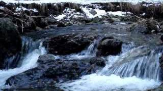 Natural Water Sounds / Babbling Brook / Meditation Nature Sounds / Rain Forest Sounds / Relaxation