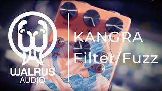MENTAL IN A BOX | Walrus Kangra Filter/Fuzz