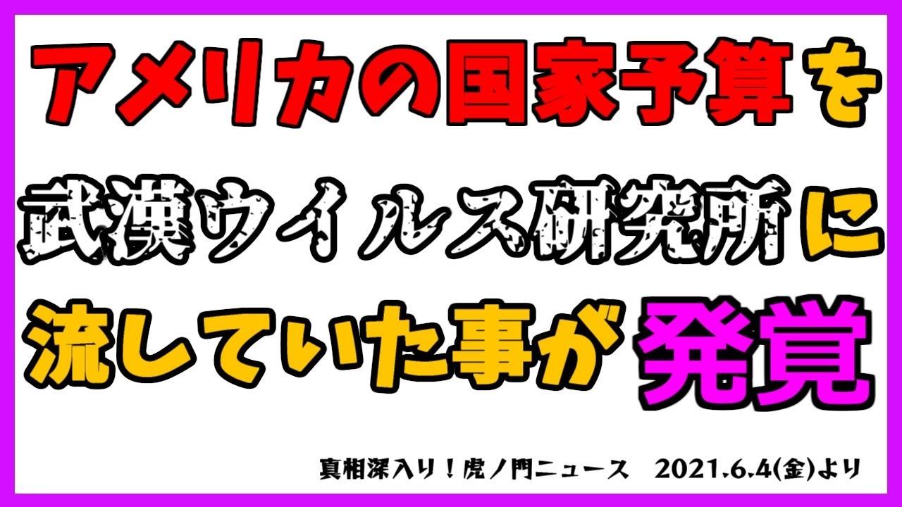 【藤井厳喜】180度方針転換して武漢研究所の調査を指示したバイデン大統領。そのワケとは?