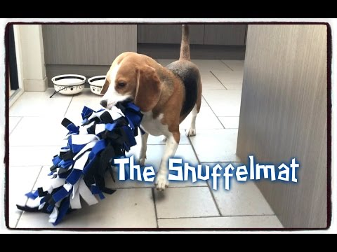 Dog Toy Critic Louie The Beagle Episode #5: The Snuffelmat
