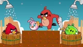 Angry Birds Take A Shower 2 - PIGGIES GOT MAD WHEN ALL SHOWER GOT STOLEN!