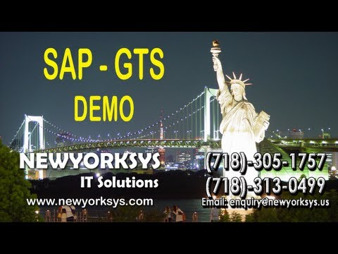 SAP GTS - DEMO TUTORIAL - NEWYORKSYS ONLINE TRAINING
