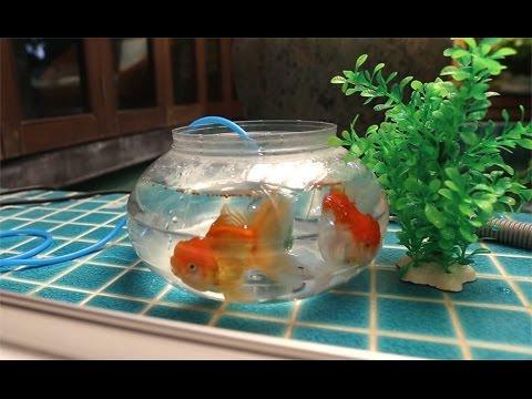 เด็กจิ๋วเลี้ยงปลาทอง ตอน4 ปล่อยปลา [N'Prim W272]