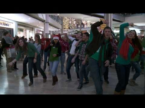 HoCoMoJo - The Mall in Columbia Christmas Holiday Flash Mob