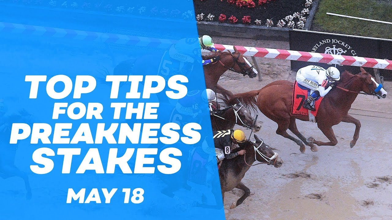 Preakness Stakes Odds & Preakness Stakes Betting Online | Bovada