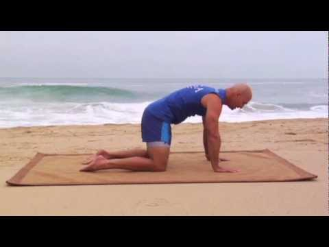 Lower Back Pain Exercises from Physical Therapy and Injury Rehab to Stop low Back Pain
