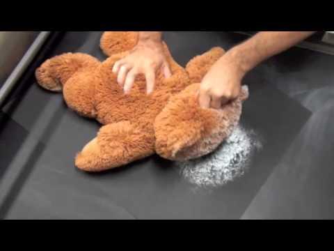 Teddy Bear Roll Out