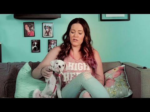 Monday Morning Critic: Krisily Kennedy Reviews AMERICAN ULTRA! - Regal Cinemas 2015 [HD}