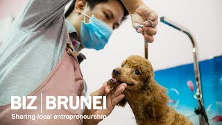 Inside Brunei's first pet grooming spa and boutique