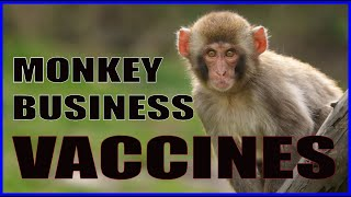 The Monkey Business of Vaccines