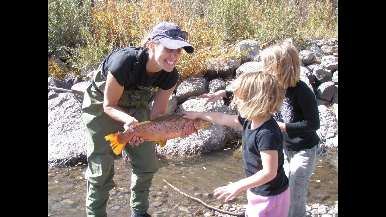 Fly fishing kokanee salmon southwestern colorado youtube for Salmon fishing colorado