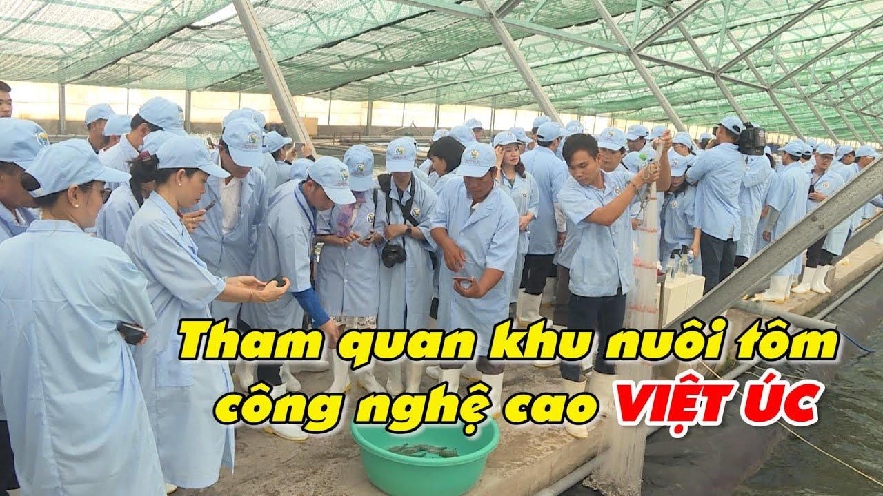 Tham quan khu nuôi tôm công nghệ cao Việt Úc – thủy sản