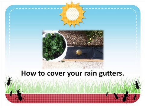 How To Cover The Self Watering Rain Gutter Grow System