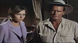 DRIVE-IN TRAILERS: 'THE PINK JUNGLE' (1968)