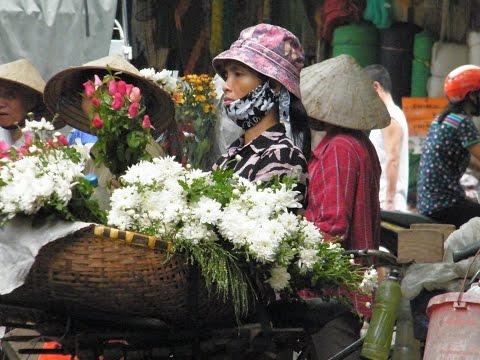 Vietnam Rondreis Vakantie in Azie Fox Reizen