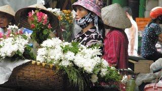 Vietnam Tour Travel in Asia