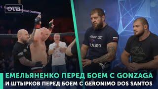Емельяненко и Штырков