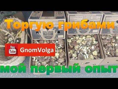 Как продать грибы