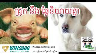 [funny clip], ឆ្កែ និងជ្រូកនិយាយគ្នា by The Troll Cambodia, khmer funny clip