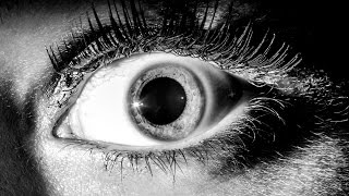 Десять секретов СТРАХА. Как нас пугают в фильмах?