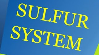 Sulphur system(hindi) - Quick easy to remember!