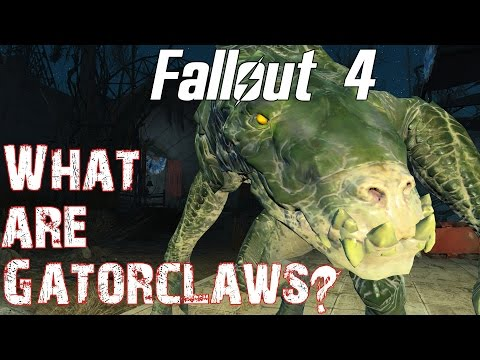 Theories, Legends and Lore: Fallout 4- What are Gatorclaws?