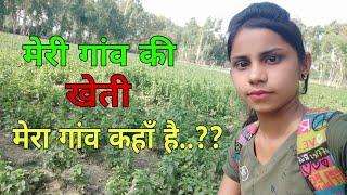 मेरा गांव || मेरे गांव की खेती और Lifestyle..??