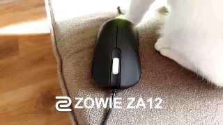 ZOWIE ZA12 REVIEW