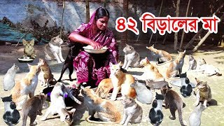 42 cats mother! They look like a child