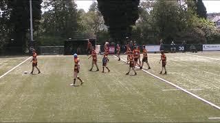 Pilkington Recs V Rylands Tiger Sharks Rugby League