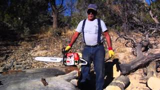 Homeowner Saws Cutting Dry Wood in Nevada