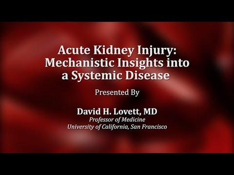Acute Kidney Injury: Mechanistic Insights Into A Systemic Disease