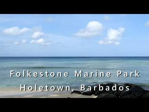 Folkestone Marine Park Barbados