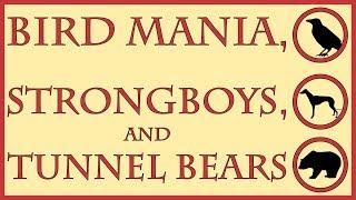 Bird Mania, Strongboys, and Tunnel Bears
