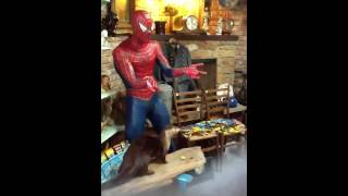 Spiderman at The Swap Shop Antiques Store