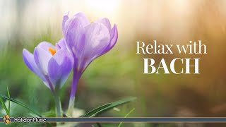 6 Hours Bach for Studying, Concentration, Relaxation