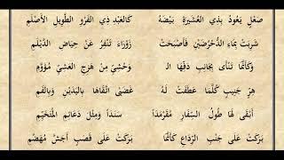 معلقة عنترة بن شداد مسموعة مقروءة بصوت الشيخ عبد الرحمن الحمين