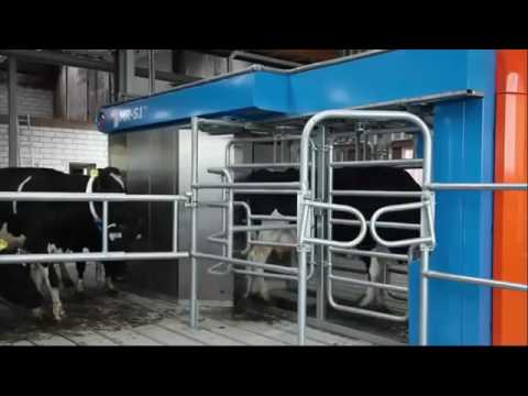 AMAZING NEW TECHNOLOGY SMART MR-S1 Milking Robot - Cow Milking Rotary