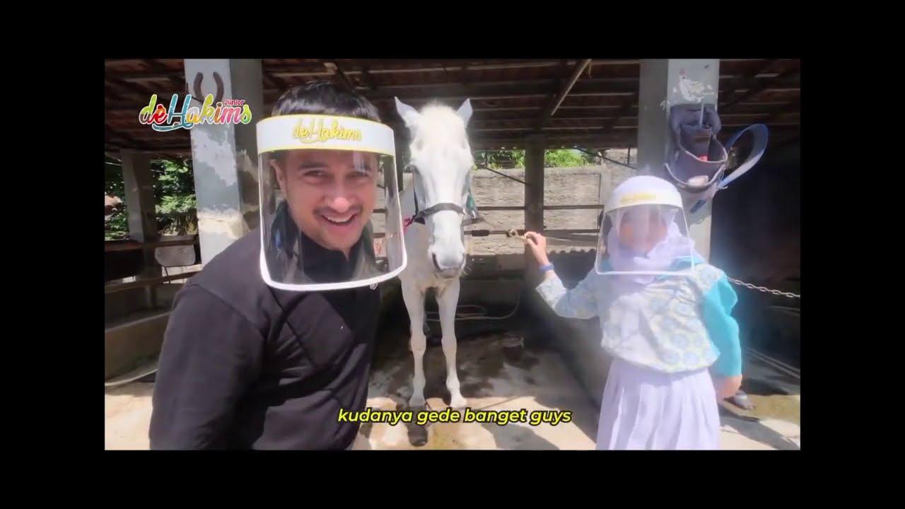 Irfan Hakim Hunting Hewan Qurban. Liat Sapi Unggul. Berapa Harga Sapinya ? – MOM & KIDS SEG1 01/08