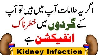 Kidney Infection Symptoms / Signs, Causes, Prevention and Treatment in Hindi / Urdu (2018)