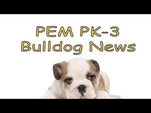 2018-01-11 PEM PK-3 Bulldog News
