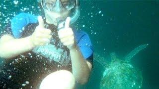Study Abroad: Galapagos Islands And Ecuador